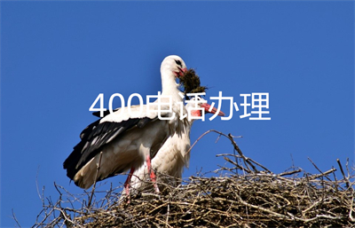 中国400电话办理公司(400电话办理机构)